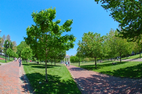 Boston_Common